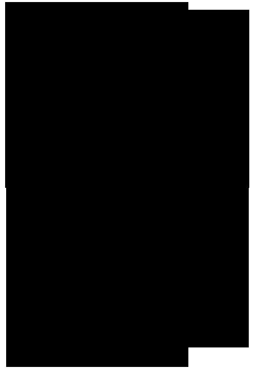 орешки-1