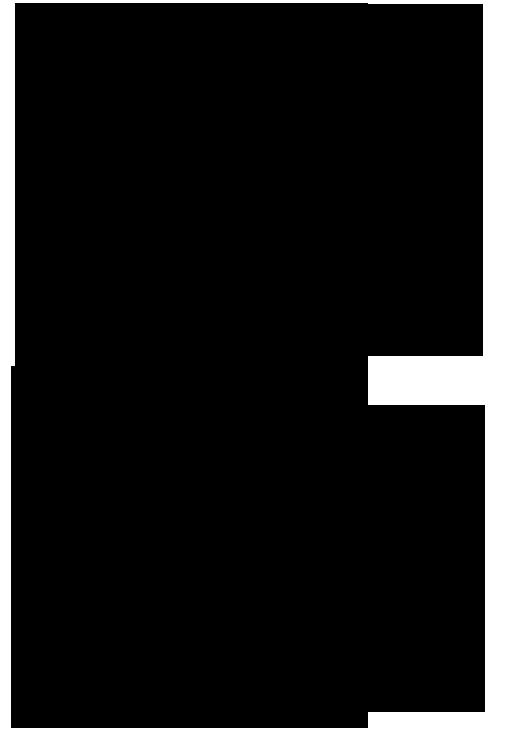 орешки-2