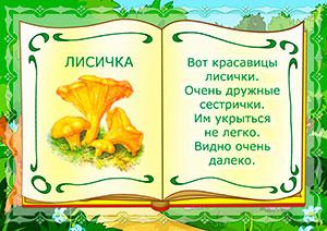 лисичка гриб
